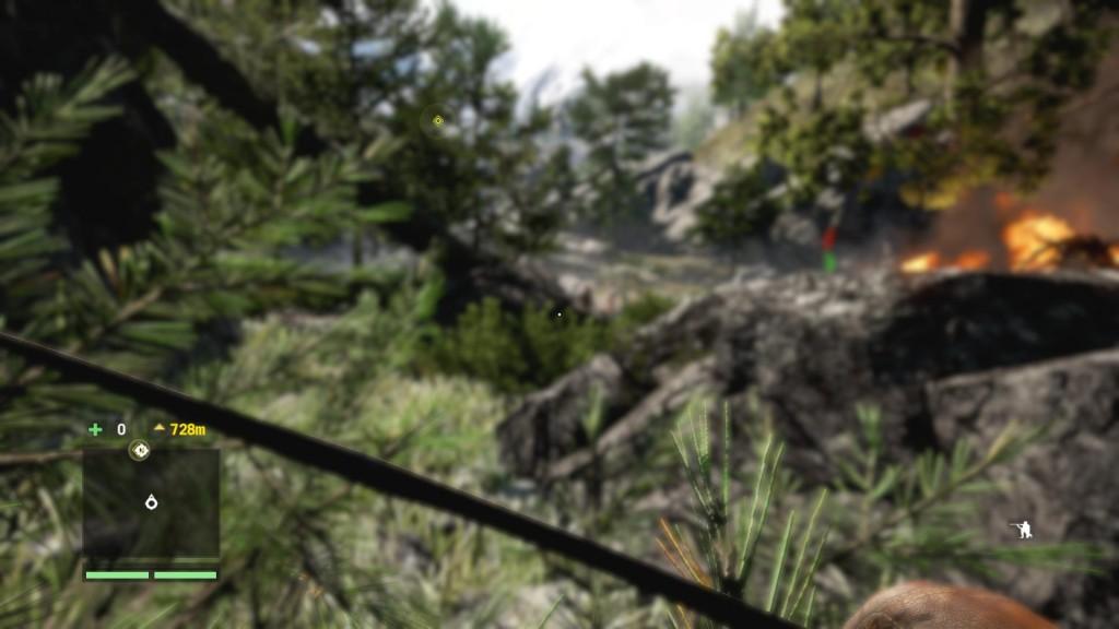 Far Cry 4 help i'm blind