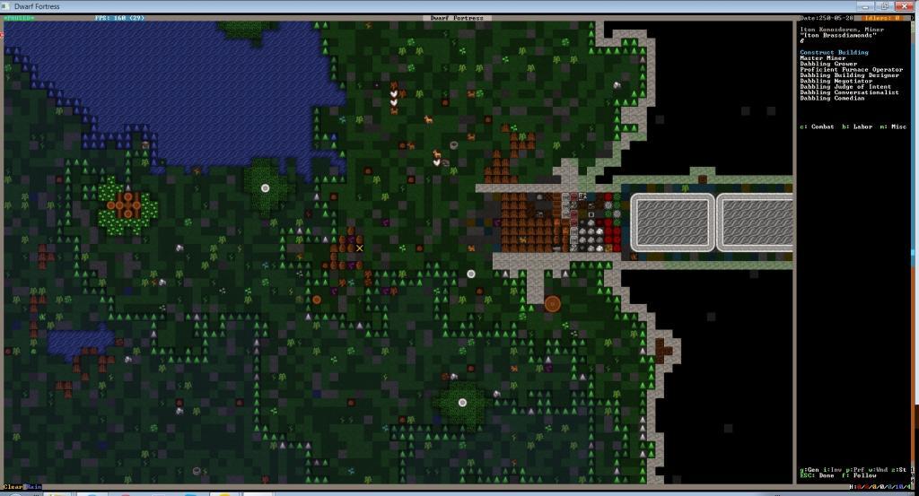 Dwarf Fortress