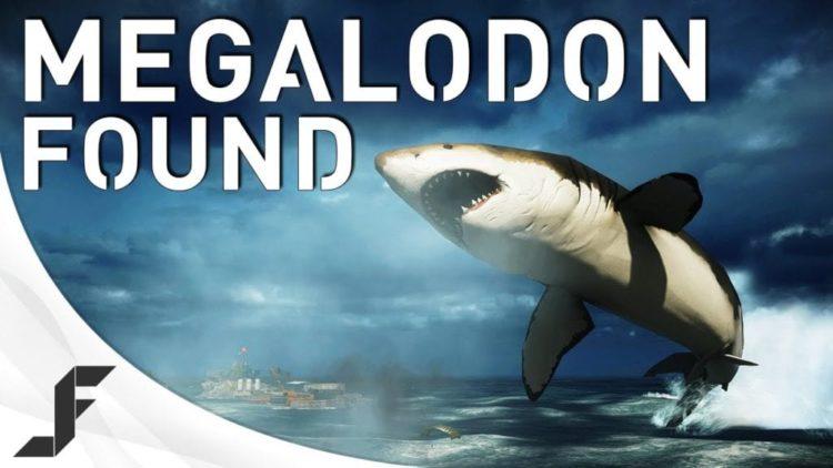 Battlefield 4 Megalodon has been found. Giant shark action inside