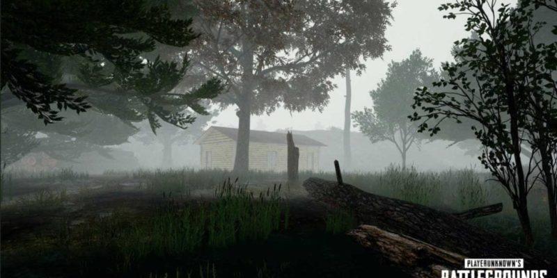 PlayerUnknown's Battlegrounds (1)