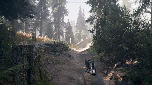 Far Cry 5 4 Ultra