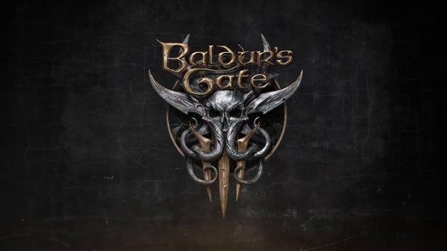 Baldur's Gate III case for a turn-based mode