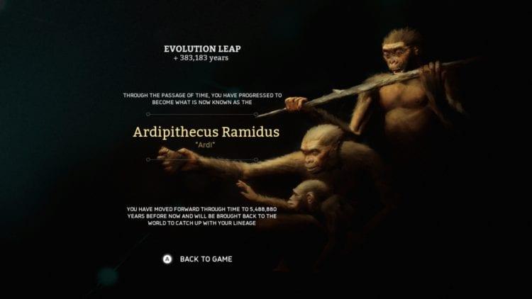 Evolution Ardipithecus