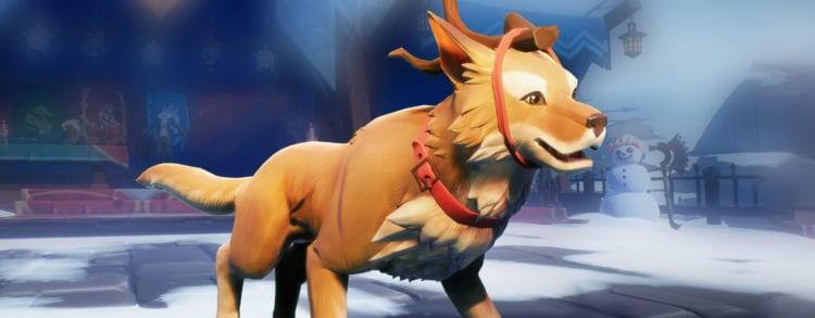 Dauntless Frostfall Dressed Up Dog