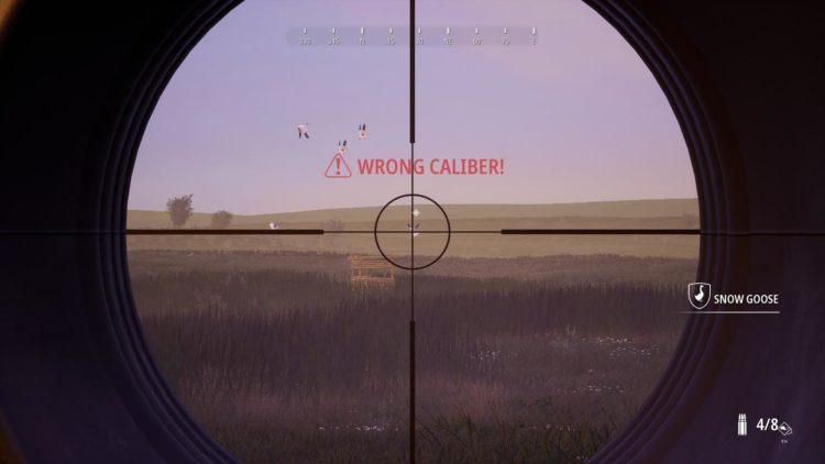 Hunting Simulator 2 34