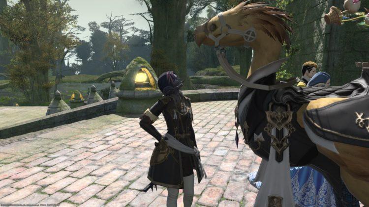 Final Fantasy Xiv Друзья