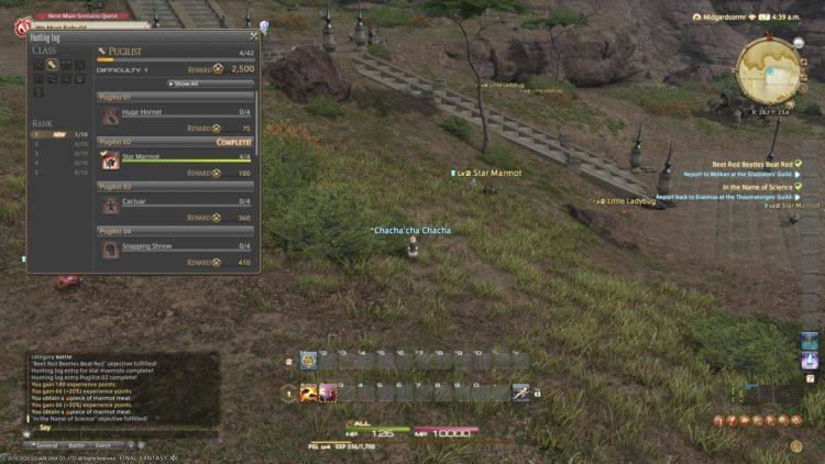 Final Fantasy Xiv Hunting Log