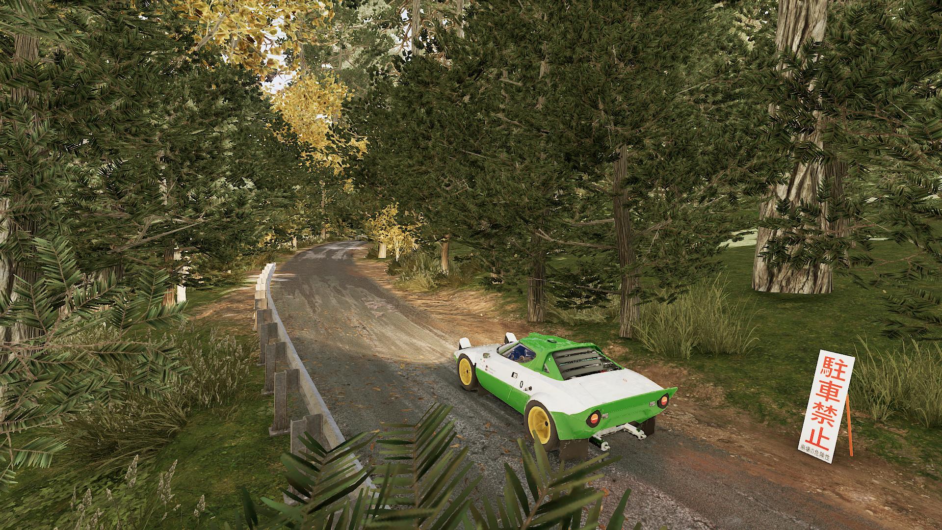 WRC 9 - Rally Star