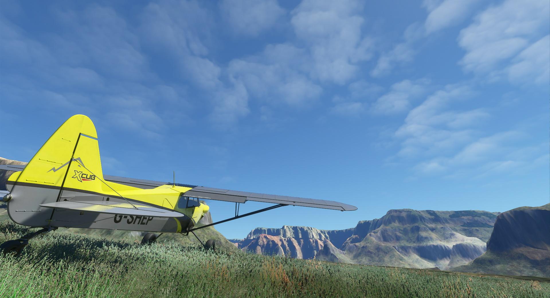 Microsoft Flight Simulator Cub In The Canyon
