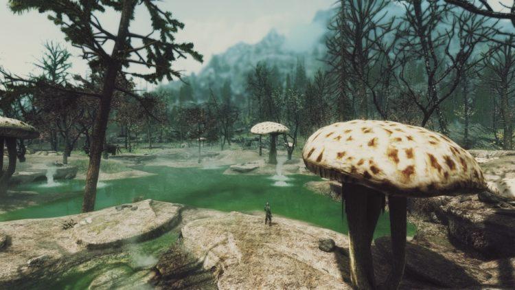 Dark Forests Of Skyrim