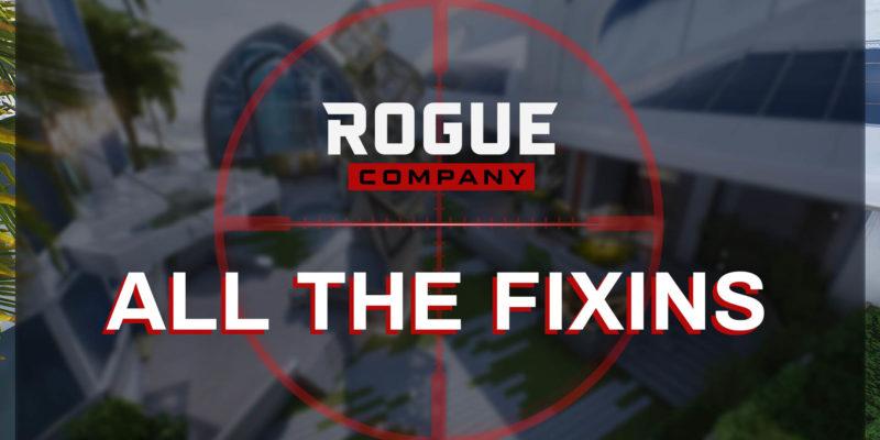 Rogue Company Patch