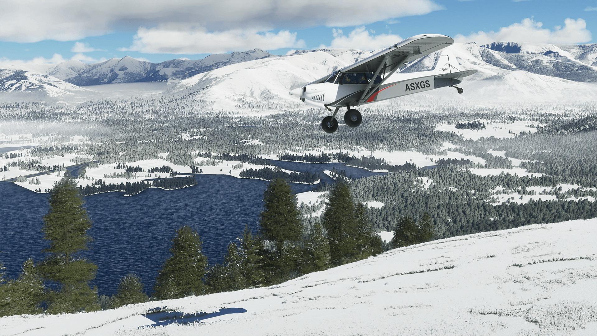 Microsoft Flight Simulator Official Snow Flight V2