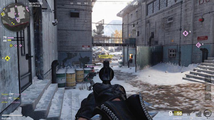 Black Ops Cold War Magnum Iron Sights
