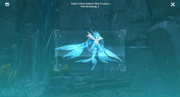 Genshin Impact Kurious Kamera Blue 생물 가이드와 2 일차 포춘 이벤트 5 개
