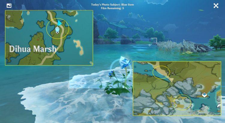 Genshin Impact Kurious Kamera Blue Items Guide Five Flushes Of Fortune Day 4 1