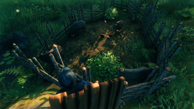 Вальхейм Как приручить кабанов на ферме Кабан на ферме Руководство по мясу 3