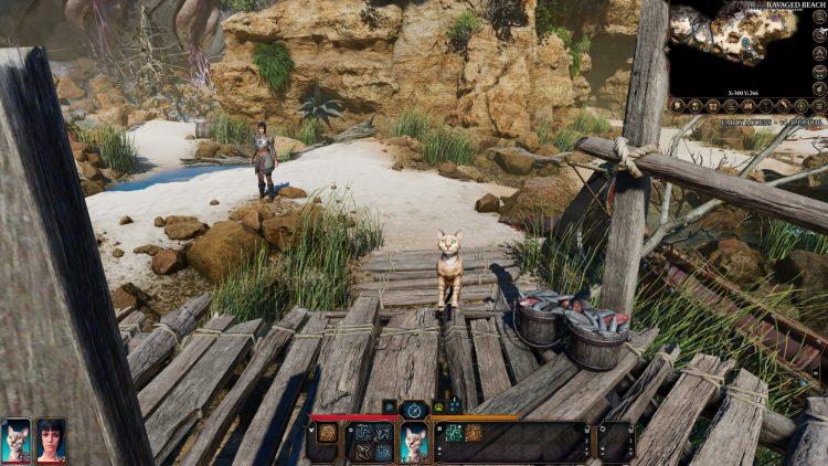 Baldur's Gate 3 Druid Wild Shape Animal Transformations Guide Bg 3 Druid Animal Transformation 4