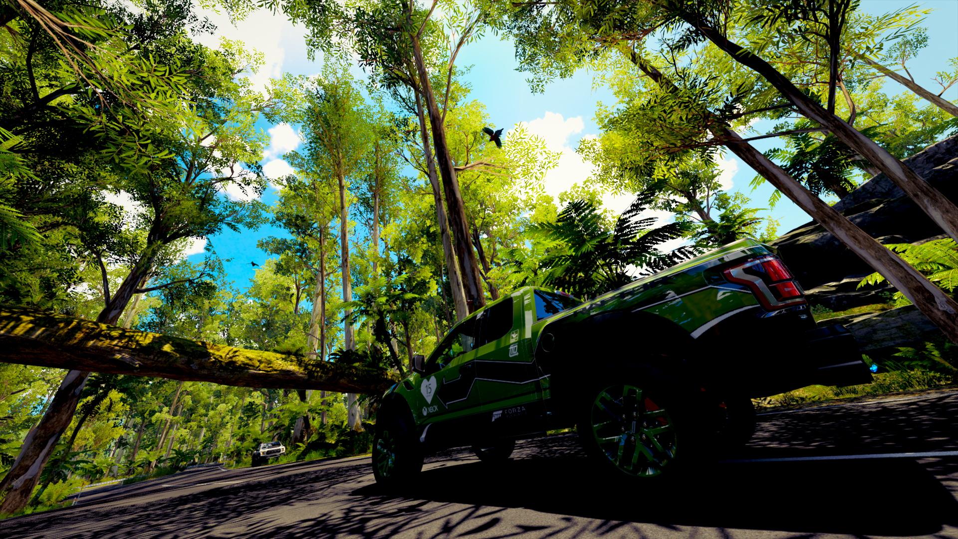 Forza Horizon 5 site map of Puerto Rico rainforest