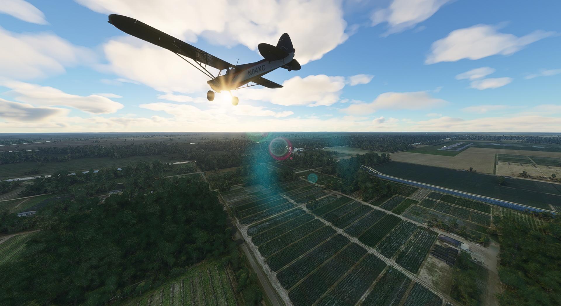 Microsoft Flight Simulator Piper X Cub Over Fl Copy