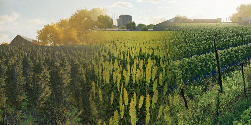 Farming Simulator 22 New Crops