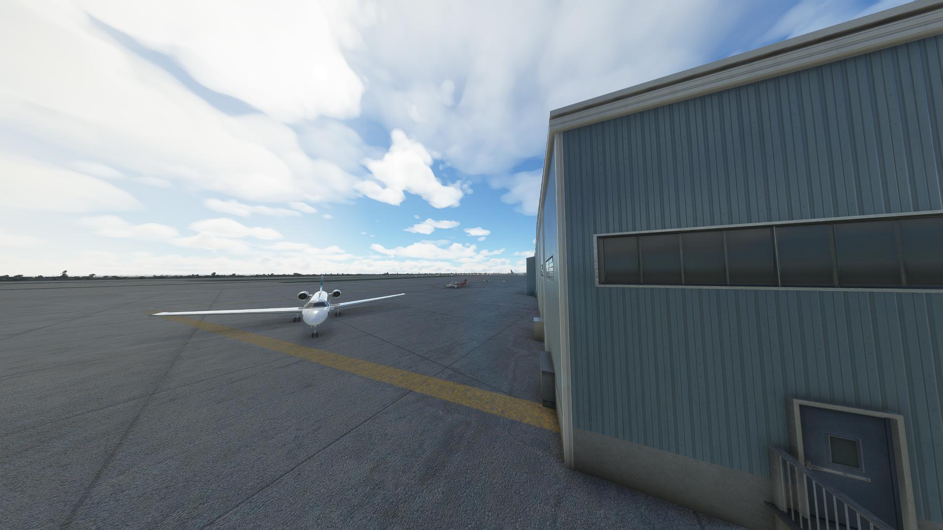Microsoft Flight Simulator Rex Global Airport Textures 1