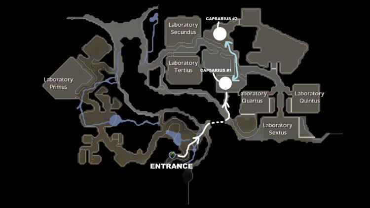 Runescape Capsarius Soul Map Guide farming