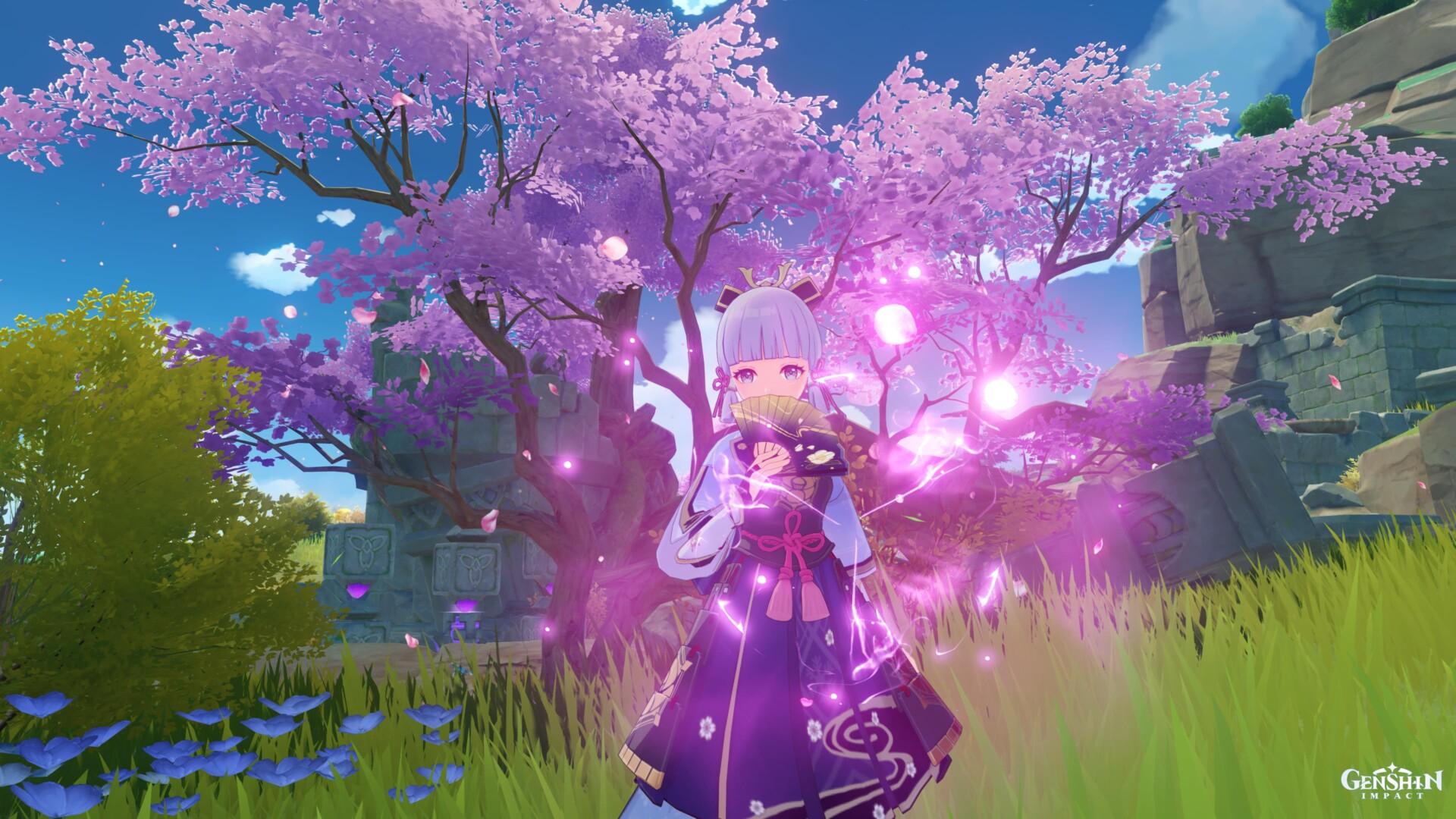 Genshin chief Wars – Sakura flower farming the areas Ayaka